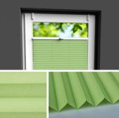 Fensterrollo grün