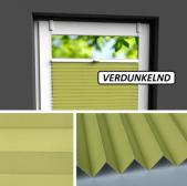 Fensterrollo grün verdunkelnd